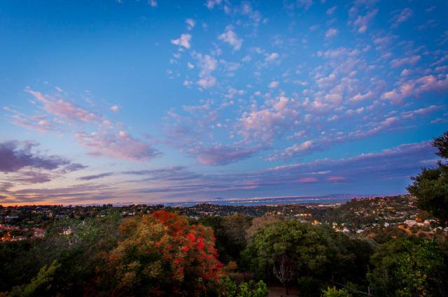 Belmont Hallmark View