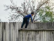 Climbing a neighbor's fence